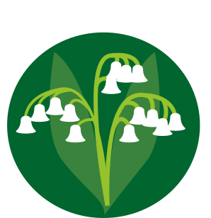GLD - the award winning golcar lily day